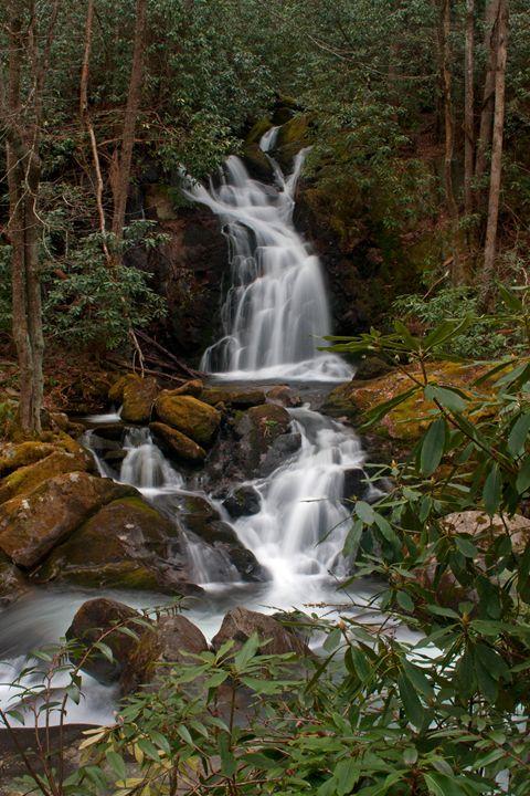 Mouse Creek Falls - David Hopkins Photography