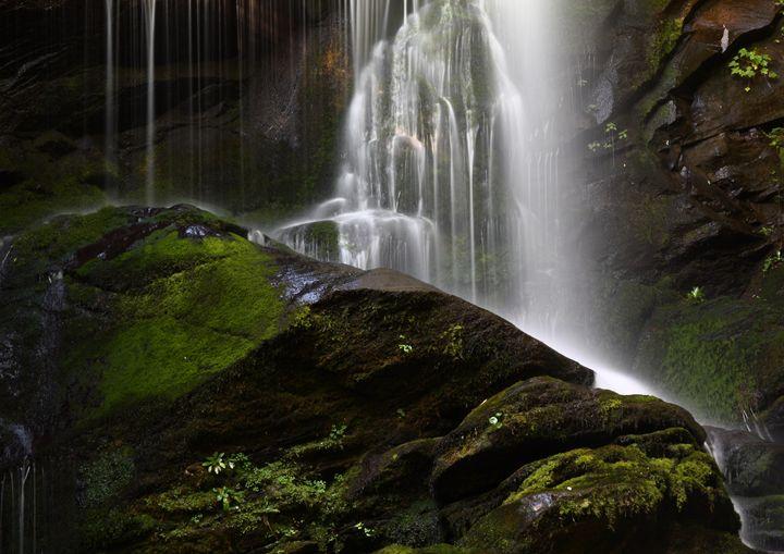 Mossy Rock - David Hopkins Photography