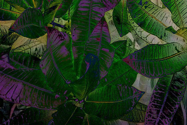 Green Leaf Song - Sabaya Art