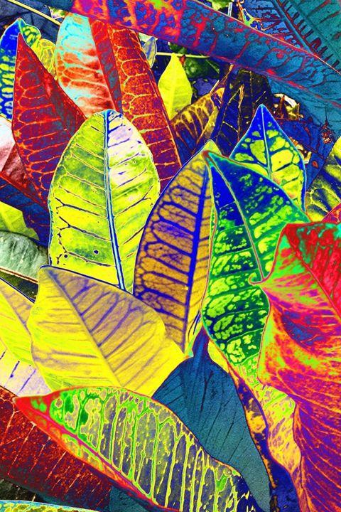 Leaves Of Joy - Sabaya Art