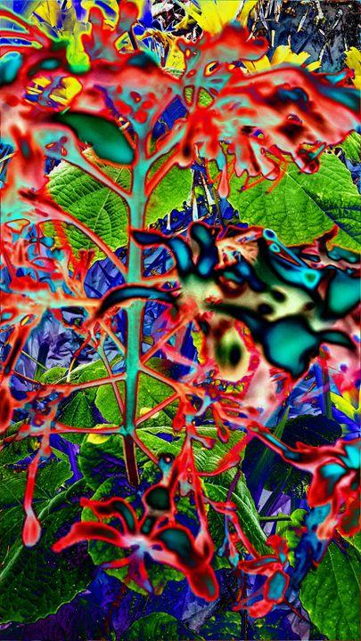 Phsychotropic - Sabaya Art