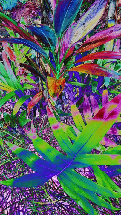Rainbow Trance - Sabaya Art