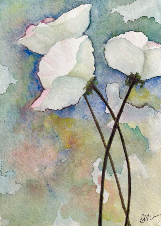 White poppies - Diane Messer Gallery