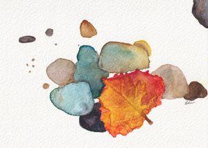 Leaf on rocks