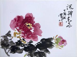 peony flower(牡丹,沉醉东风)