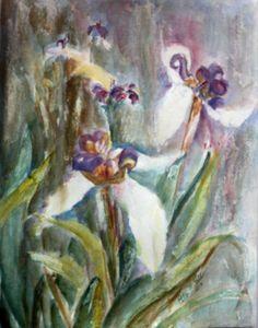 Canyon Woods Irises