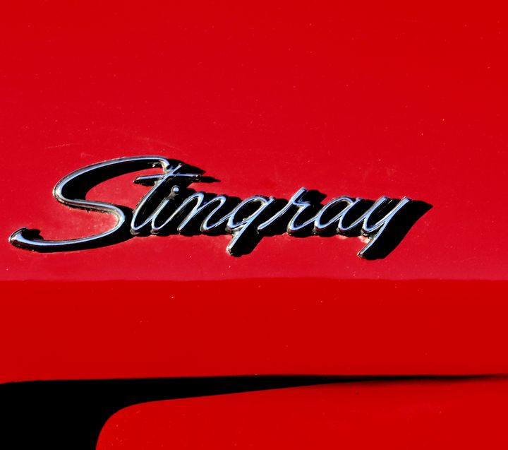 Stingray - Steve Stones