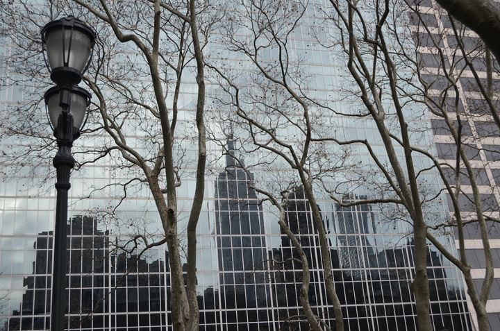 Reflections of New York - Steve Stones