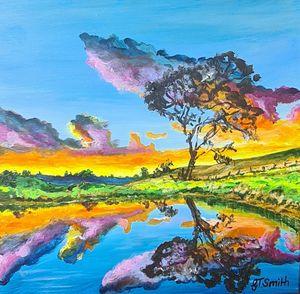 'Colour Pond'
