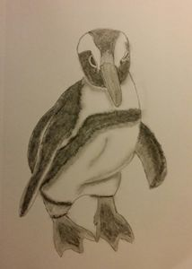 Posing Penguin - Lee 'Bert' Hammond