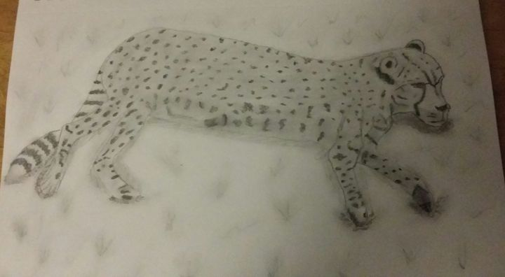 Lazing Cheetah - Lee 'Bert' Hammond