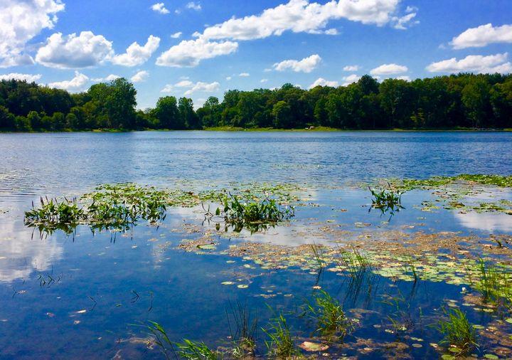 Pine Canyon Lake West View - Nancy Kensill-Grubb