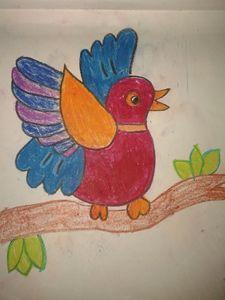 FUNNY BIRD - TULIKAAZ