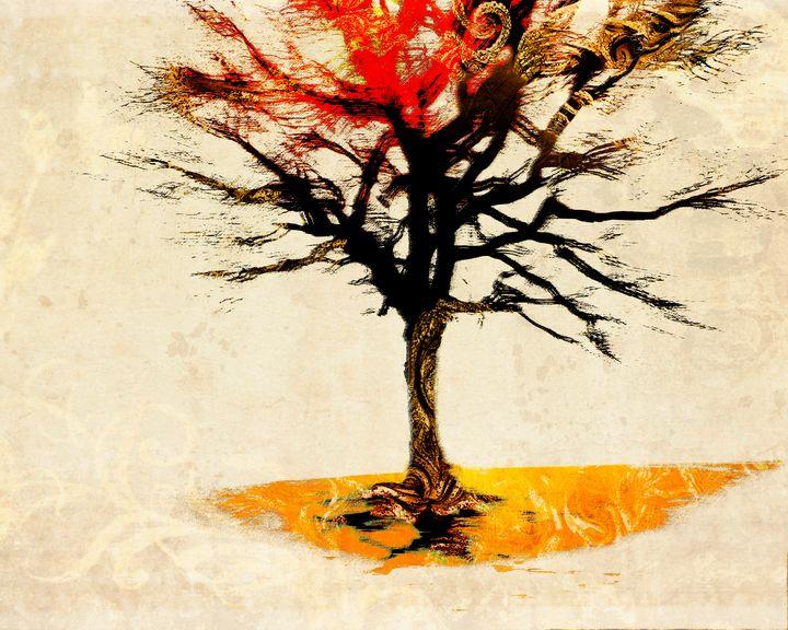 The Last Sunset - Edmund Nagele F.R.P.S.