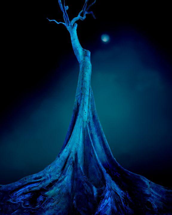 Blue Moon Night - Edmund Nagele F.R.P.S.