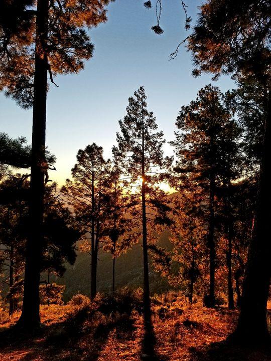 Mountain morning - Lifesthings
