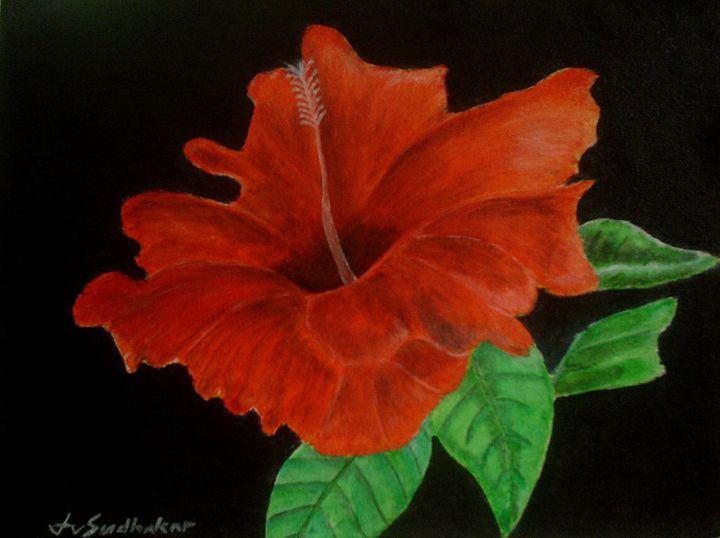 Hibiscus - SSS ART
