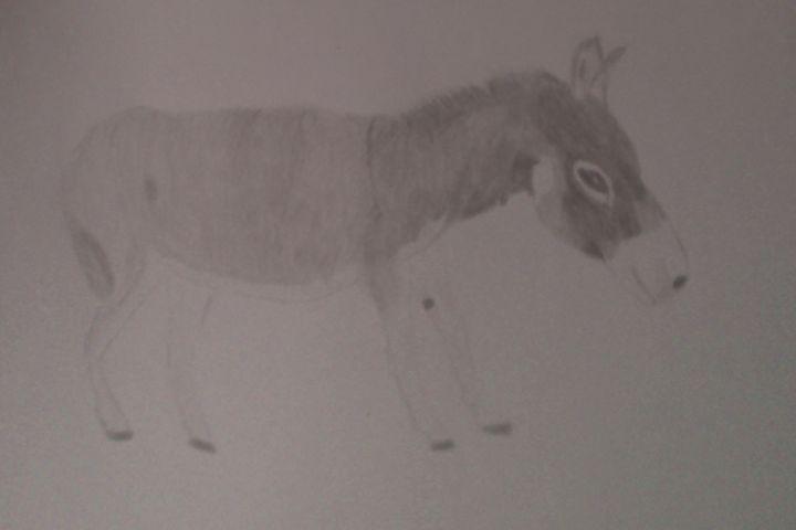Donkey - Holly's Gallery of Art