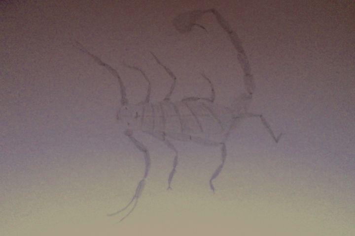 Scorpion - Holly's Gallery of Art