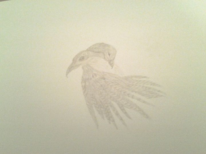 Bird Love - Holly's Gallery of Art