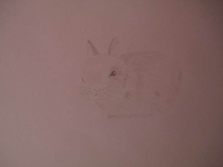 Bunny - Holly's Gallery of Art