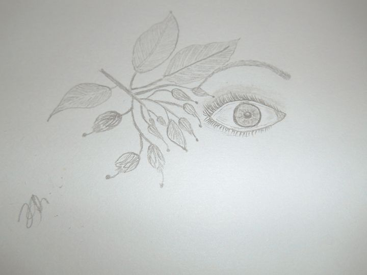 Eye - Holly's Gallery of Art