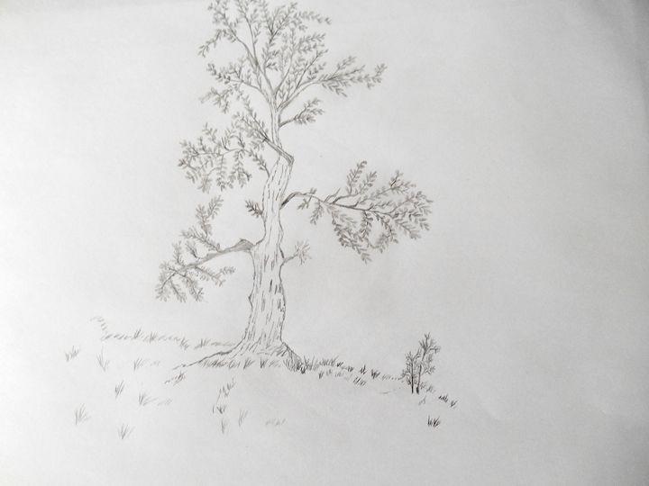 Tree - Holly's Gallery of Art