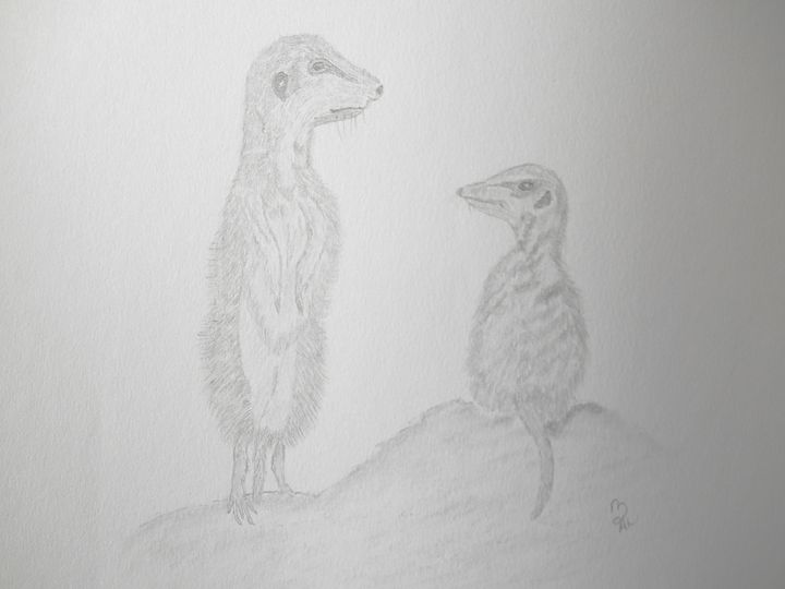 Meerkats - Holly's Gallery of Art