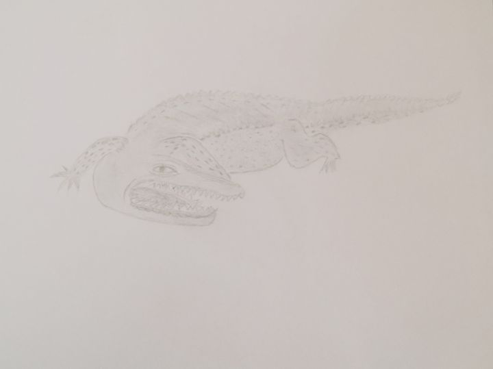 Crocodile - Holly's Gallery of Art