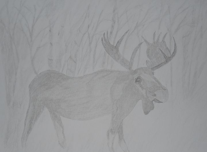 Moose - Holly's Gallery of Art