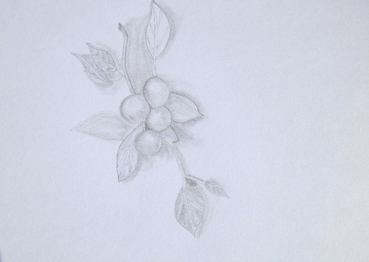 Berry Vine - Holly's Gallery of Art