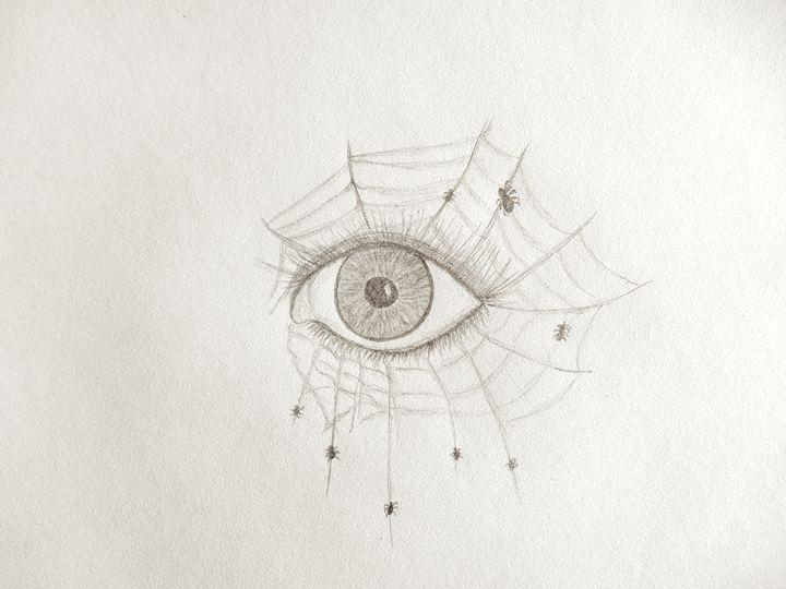Spider eye - Holly's Gallery of Art