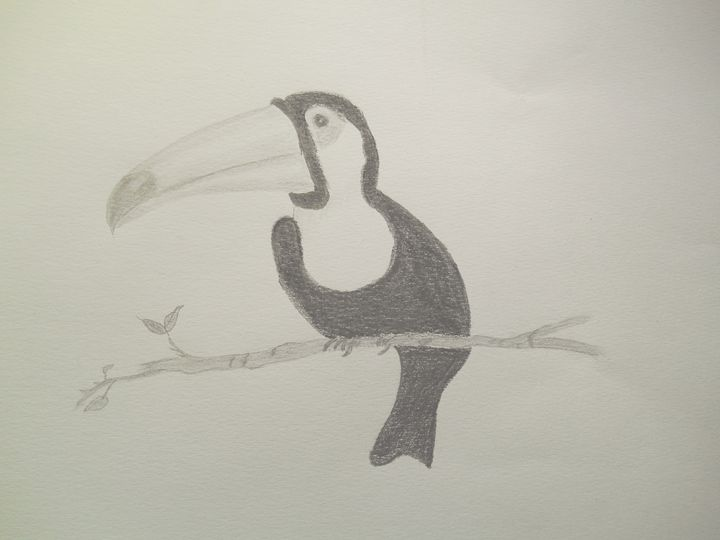 Toucan - Holly's Gallery of Art