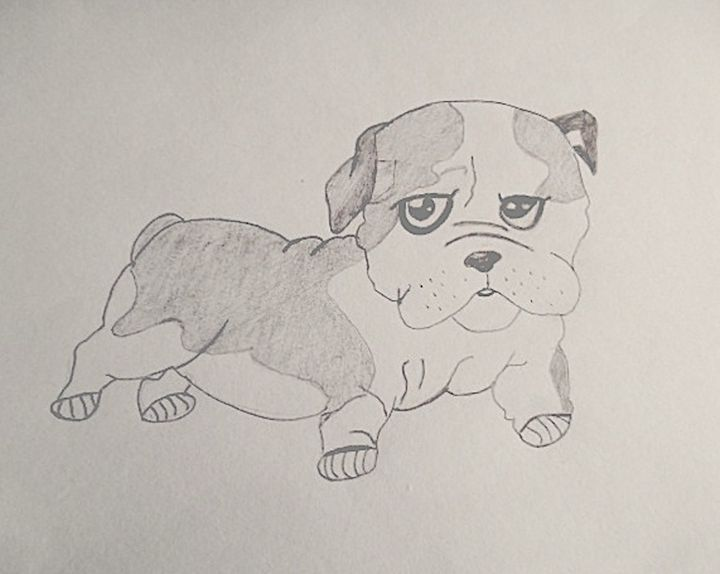 Puppy - Holly's Gallery of Art