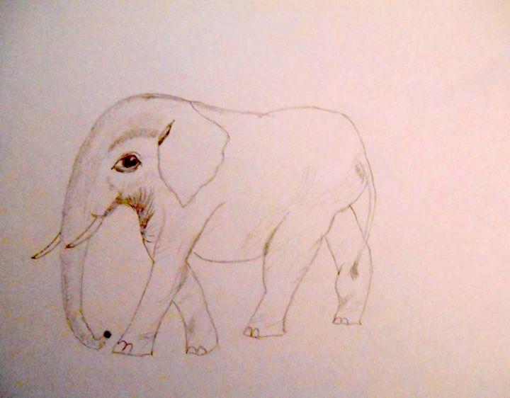 Elephant - Holly's Gallery of Art