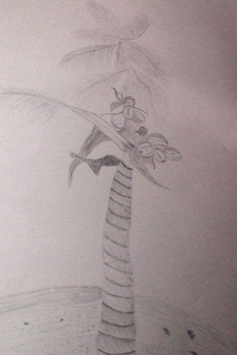 Coconut Tree - Holly's Gallery of Art