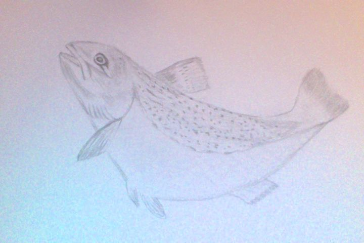 Fish - Holly's Gallery of Art