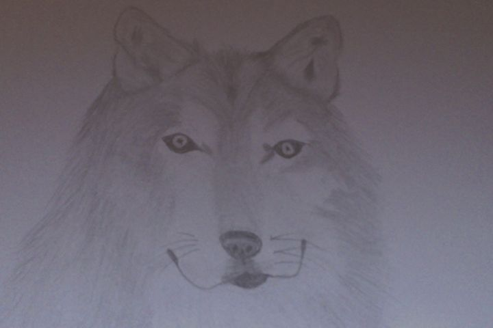 Wolf - Holly's Gallery of Art