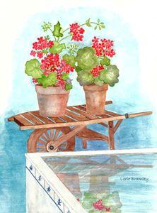 Geranium Reflection - Lorie Bramley