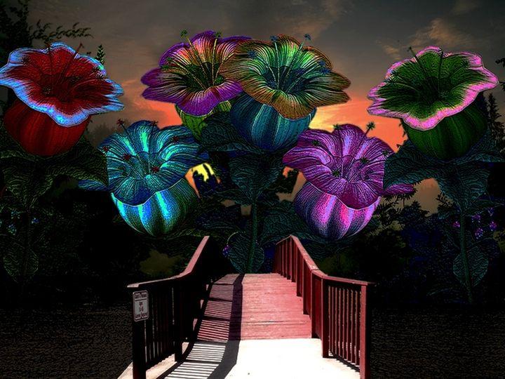 Puente Al Paraiso - Sonia Glez