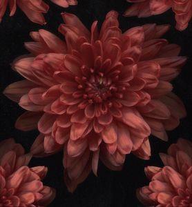 Surreal Flowers #10