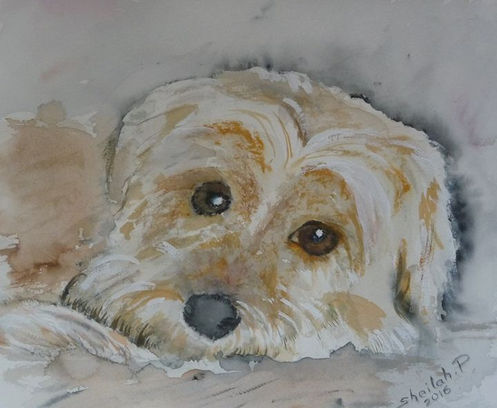 Meggie - Sheilah's Art