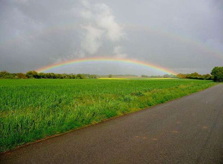 Under the Rainbow a Beautiful Day - Sheilah's Art