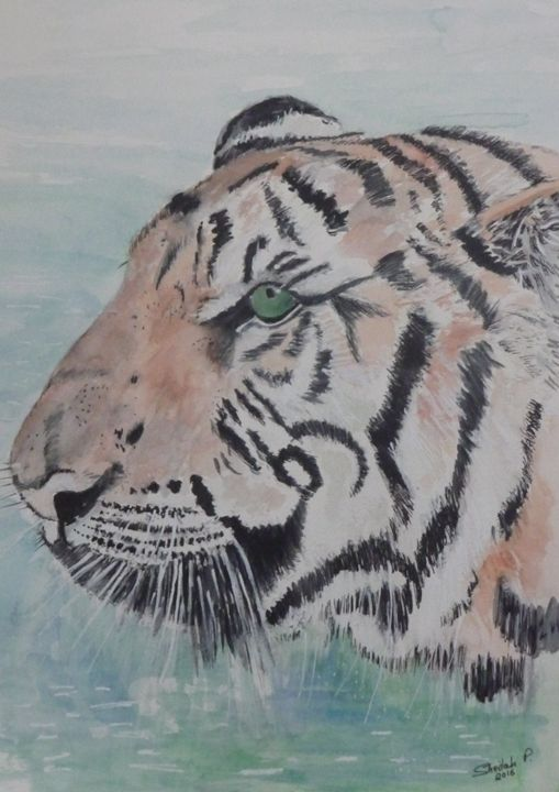 Tiger in Tailand - Sheilah's Art