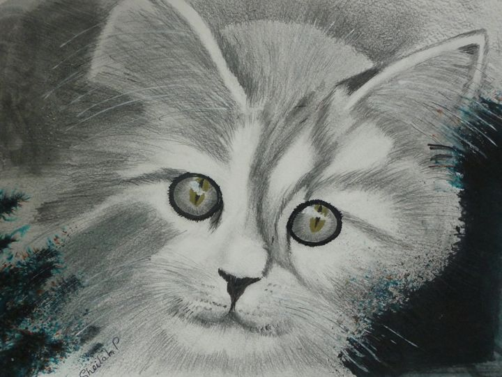 Kitten in watercolour and ink - Sheilah's Art