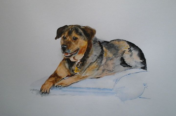 Butch in USA - Sheilah's Art