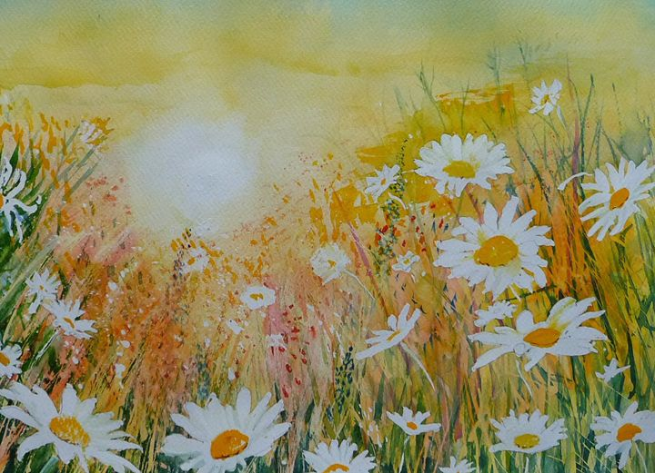 Daisies in Sunshine - Sheilah's Art