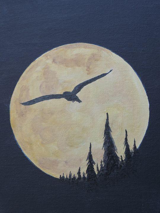 Night Flight - Onie Kimble