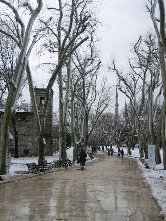 wintry road inside Topkapi Palace - bluemeteor