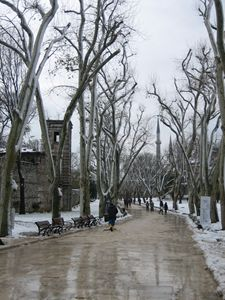 wintry road inside Topkapi Palace